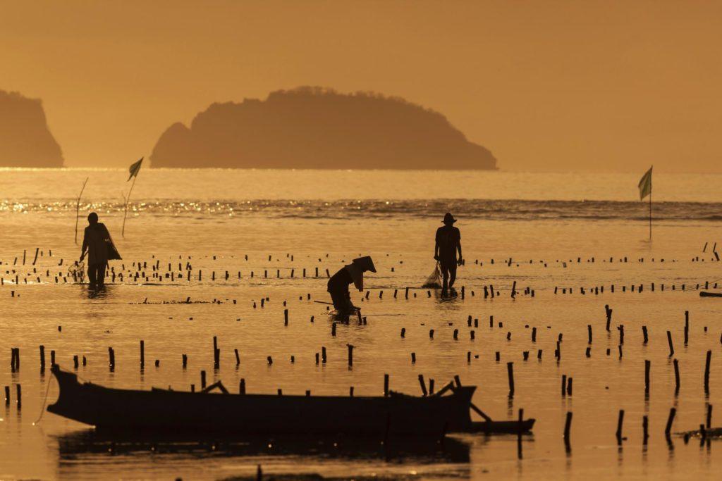 Fischer Indonesien Abendstimmung
